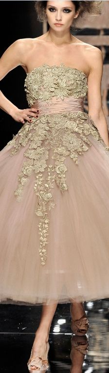 Elie Saab Haute Couture ~ Evening Dress, Blush Pink, Taupe Embellishments