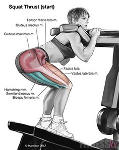 Parallel Squats on Leg Thrust Machine These are really good to add to any leg workout. I do 5 sets of 15reps, 90lbs. Will be adding more weights next week.