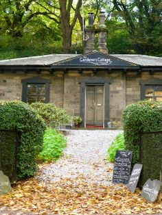 The Gardeners Cottage, Edinburgh. One of the best restaurants in the UK right now... Just on the London Road.