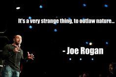 Strange indeed...