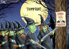 Political cartoons by A.Branco, member of the Association of American Editorial Cartoonists. Cartoon Title = Which is Witch. Caricatures, Cartoon Witch, Funny Political Cartoons, Funny Politics, Trump Cartoons, Open Season, Donald Trump, Presidents, Seasons