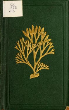 Just can't kelp it... Synopsis of British seaweeds 1857