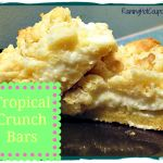 Tropical Crunch Bars from Raining Hot Coupons