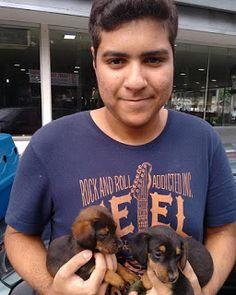 TAXI DOG MONTANHA TRANSPORTE DE ANIMAIS NO RIO DE JANEIRO: 27/10/2015 -- Esse aí é o Junior Alves e seus dois...