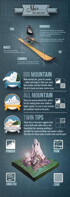 ski infographic 2013 graphic design illustration