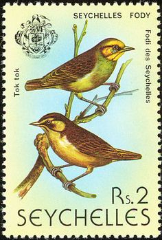 Seychelles Fody stamps - mainly images - gallery format