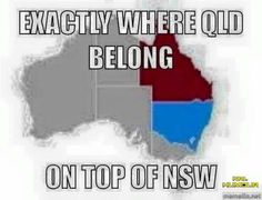 NRL Memes Nrl Memes, Rugby Memes, Rugby League, Rugby Players, State Of Origin Memes, Broncos Memes, Brisbane Broncos, Couple Texts, Funny Iphone Wallpaper