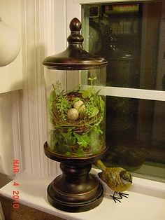 window sill decor, love the little bird & nest in the glass lantern. Gold Lanterns, Lanterns Decor, Vase Decorations, Apothecary Jars Decor, Cloche Decor, Kitchen Window Sill, The Bell Jar, Bell Jars, Jar Fillers