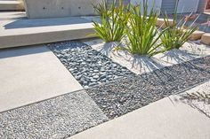 grounded modern landscape architecture
