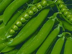 SzentesiMag | Kifejtőborsó vetőmag rendelés Celery, Zucchini, Keto, Vegetables, Garden, Food, Garten, Lawn And Garden, Essen