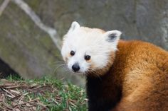 """Let's not leave it so long next time."" 