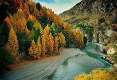 Otago, Nueva Zelanda.                                                                                                                                                                                 Más