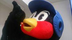 わーたし。 |つば九郎オフィシャルブログ「つば九郎ひと言日記」Powered by Ameba Baseball, Pillows, My Favorite Things, Blog, Blogging, Cushions, Pillow Forms, Cushion