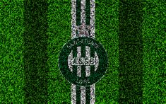 Download wallpapers AS Saint-Etienne FC, 4k, football lawn, logo, French football club, grass texture, emblem, green white lines, Ligue 1, Saint-Etienne, France, football