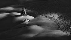 Svoboda Winner Slovakia National Awards 2016 Sony World Photography Awards Mountain Photography, World Photography, Photography Magazine, Landscape Photography, Artist Canvas, Canvas Art, Sony, International Photography Awards, National Geographic Photos
