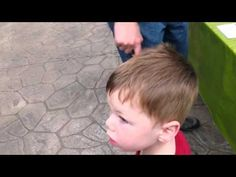 This is Ryder at the Butterfly Conservatory