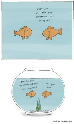 "fishbowl ""I Spy"" 