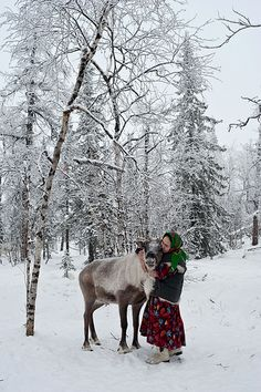 Nenets woman with reindeer