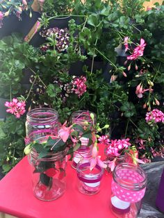 Comment créer un mur végétal pour le balcon : en utilisant par exemple le kit mur végétal Nature Up ! avec arrosage intégré de Gardena. C'est la solution idéale pour créer rapidement un jardin vertical sur votre terrasse ou balcon.