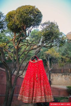 Royal red and gold lehenga photography by Knotty days weddings | weddingz.in | India's Largest Wedding Company | Wedding Venues, Vendors and Inspiration | Indian Wedding Bridal Jewellery Ideas |
