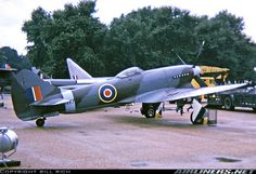 Aircraft Propeller, Ww2 Aircraft, Fighter Aircraft, Military Aircraft, Fighter Pilot, Fighter Jets, Westland Whirlwind, Hawker Tempest, Hawker Typhoon