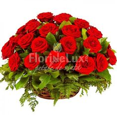 Cos cu trandafiri rosii - super oferta pentru acest produs. Cos impresionant cu 31 trandafiri pasionali ❤️❤️❤️❤️