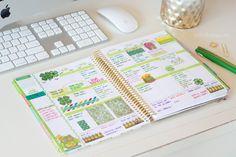 planner organization with erin condren life planner
