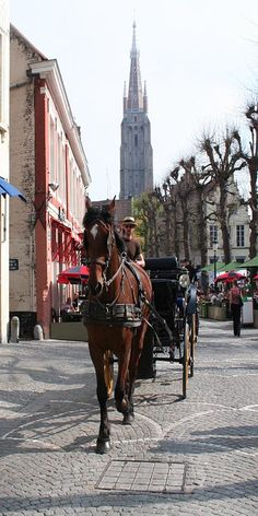 Brugge Belgium. I'm a sucker for Carriage rides