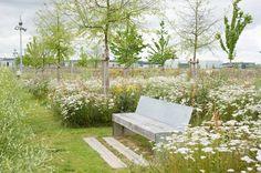 Landscape-architecture, Natural Park - Mont Evrin Park. Credit: Urbicus