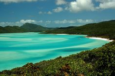 Best Beaches in Australia Holidays Oh The Places You'll Go, Places To Travel, Travel Stuff, Travel Destinations, Around The World In 80 Days, Around The Worlds, Australia Holidays, Beyond The Sea, Green Photo