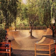 this is the best backyard ramp