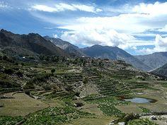 Os campos em terraços ao redor da aldeia Nako na fronteira Kinnaur / Spiti no estado de Himachal Pradesh, perto da fronteira tibetana, Índia.  Fotografia: 4ocima no Flickr.