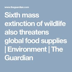 Sixth mass extinction of wildlife also threatens global food supplies   Environment   The Guardian