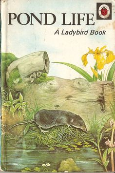 Pond Life Ladybird Books by RetroBooksUK on Etsy, £3.00