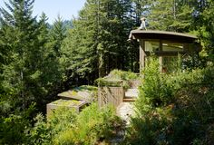 View of both Mill Valley Cabins and Living Roof