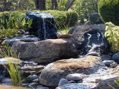 ... Country Landscape Design Total Outdoors Landscaping Carlsbad, CA