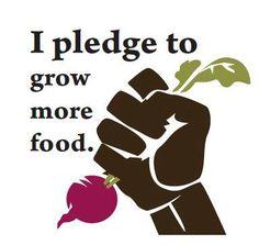 I Pledge to Grow more Food.