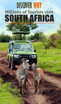 Discover why Millions of Tourists visit South Africa #travel #africa