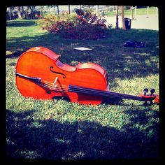 Cello at rest