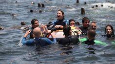 Islas Palomino. Este hermoso destino se encuentra en la Provincia Constitucional del Callao. Ahí puedes gozar de la inigualable experiencia de bañarte en el mar junto a una gran cantidad de lobos marinos. (Foto: Difusión)