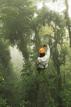 Ziplining - Monte Verde, Costa Rica Uno de mis lugares favoritos por mucho... tal vez tuvo que ver la compañía