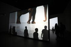 New York / exposition Laurie Diaz Photographe - Studiole carré