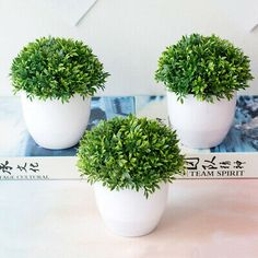 Number of Pcs: DesktopMaterial: PlasticPlant Style: Bonsaiis_customized: NoColor: for: home decorfeature: artificial plantsNEW Artificial Plants Bonsai Small Tree Pot Plants Bonsai Fake Flowers Potted Ornaments For Home Decoration Hotel Garden Decor Cheap Artificial Plants, Artificial Silk Flowers, Fake Flowers, Fake Plants Decor, Plant Decor, Potted Plants, Succulent Plants, Bamboo In Pots, Bamboo Leaves