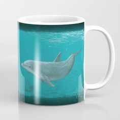 "Mugs ••• ""Shallow Reef"" Acrylic painting, dolphin art by Amber Marine ••• AmberMarineArt.com •••"