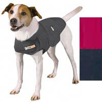 Thundershirt for Dogs @ Pet360.com #GreatProduct