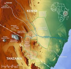 Find your perfect African safari. Best priced safari holidays available. Your trusted specialized safari operator. National Parks Map, National Museum, Forest Conservation, Safari Holidays, Mangrove Forest, Kenya Travel, Arusha, Forest Service, Nairobi