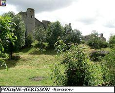 79POUGNE-HERISSON_herisson_106.jpg
