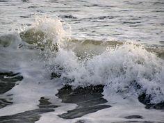 february waves