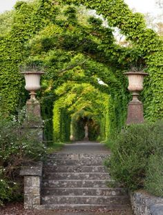 Lush arbor covers an old garden path lined with antique statues and urns... anybody see this look being possible in So-Tex?