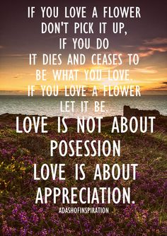 Love is not about possession, love is about appreciation..  The spelling mistake in this is driving me nuts but I love the quote.